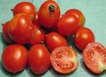 Pomodoro Principe Borghese